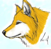 Tablet Testing: Wolf by atrueenglishman