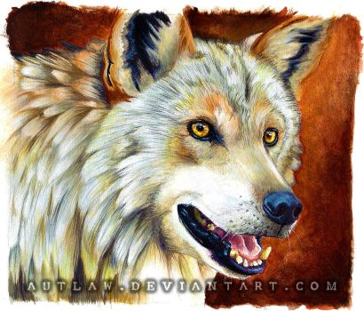 Wolf painting by Autlaw