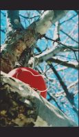 Red Balloon by Crash-Photographs