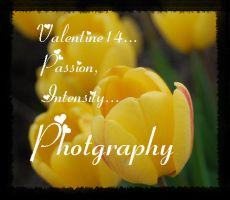 Photography by Valentine14