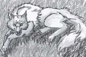Tired Wolf by IzaPug