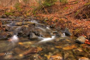HDR Spring Stream 3 by Nebey