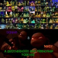 a Brotherhood and Friendship (Donnie and Mikey) by Theresmorethanme