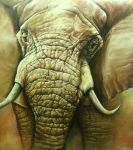Elephant Oils painting. by marvinrazo