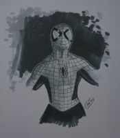 Amazing Spider-Man w/ DB Twin Marker by CuberToy