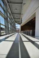 Steel, Concrete, and Sunshine by Nariane