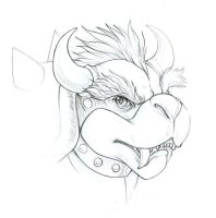 bowser by hibbary