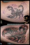 Scorpio cover-up by DarkArtsColective