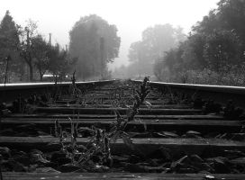 Life on the railway by r3akc3