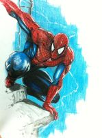 Spiderman by Tomuribecastro