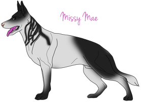 Missy Mae by Bright-In-The-Night