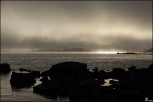 The Mist by Chribba