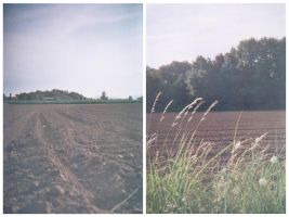 Divertissement, a diptych by Monster0id
