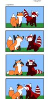 Copy Fox Contest Entry by kittykatgamergirl
