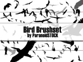 Bird Brushset by paranoidstock
