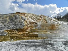 Mammoth Hot Springs VII by Synaptica