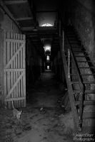 Eastern State Penitentiary 22 by JessicaStarrPhoto