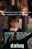 Derp and Dafuq Harry Potter 2 by harypotter37