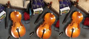 Broken Cello Package by SnapShot120