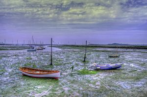 Newtown Estaury, Isle of Wight by Tangent101