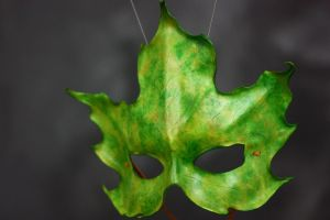 Green Sugar Maple Mask by rjoart