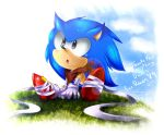 Can I be in Sonic Boom (?) (Gift for RAWN89) by YL-17