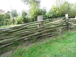Old Fence 4 by mrscats