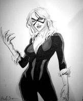 Black Cat by ReillyBrown