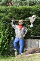 Scarecrow? by organicvision