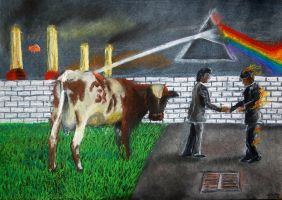 Pink Floyd 5 album covers in one pic! by OndrasCzech