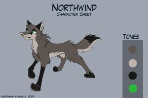 Northwind - oldCharacter Sheet by Skailla