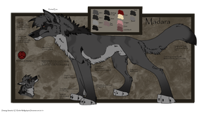 .: Madara Ref: Updated :. by Dunkin-Prime