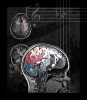This Is Your Brain on Music by JennaD123