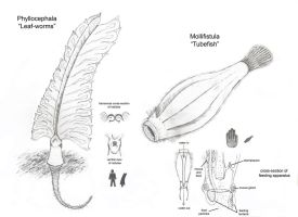More Erytheian Lifeforms by Onironus