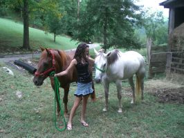 Me and My New Horses by JasmineBelle
