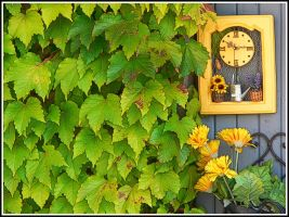 Leaves and clock by kanes
