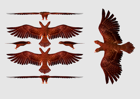 Eagle of Albania 3D by sanderndreca