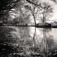 River Wey II by Jez92