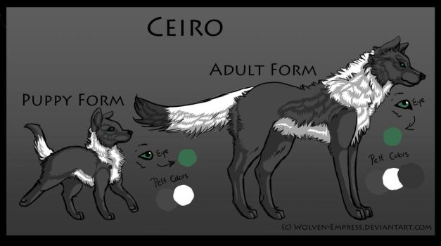 Ceiro Reference by Wolven-Empress