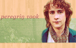 Peregrin Took by iIIumination
