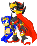 Sonic Kingdom - High King Shadow and Slave Sonic by SonicRemix