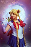 Sailor Moon Request Edit by theenaLuv12