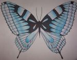 Butterfly - Blue by The-Butterfly-Club