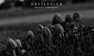 IMG_4287 by D3vilusion