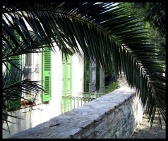 Bastia - House in a Palm -C by michelv