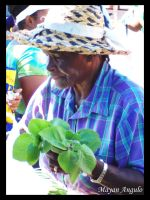 Bridgetown Market Vendor by Mayanita