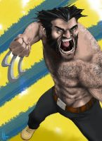 Wolverine by MeaT-Artworx