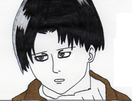 Levi Rulespng by tabby25