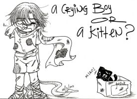 A Crying Boy or A Kitten by resiove