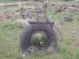 Roll of Wire Fence by arowolf